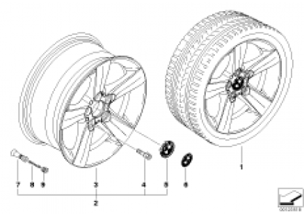 BMW LA wheel, star spoke 119