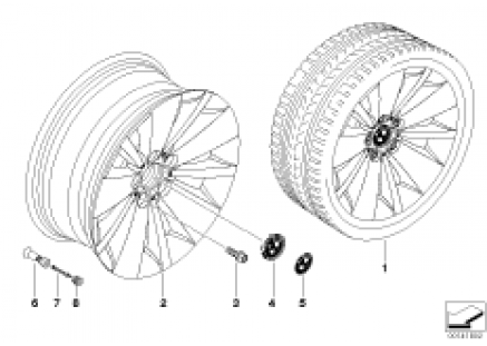 BMW LA wheel/double spoke 174