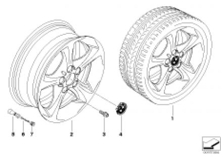 BMW LA wheel, star spoke 256