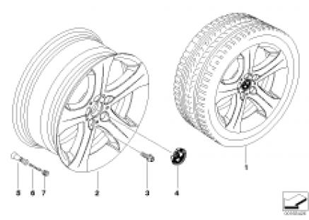 BMW LA wheel, star spoke 258