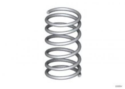Rear coil spring