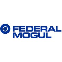 logo-federalmogul